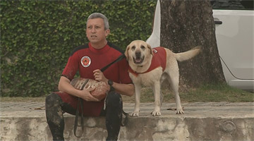 Itajaí tem o primeiro cão guarda-vidas do Brasil
