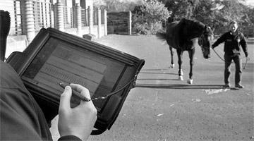 Uso de sensores no diagnóstico da claudicação em equinos